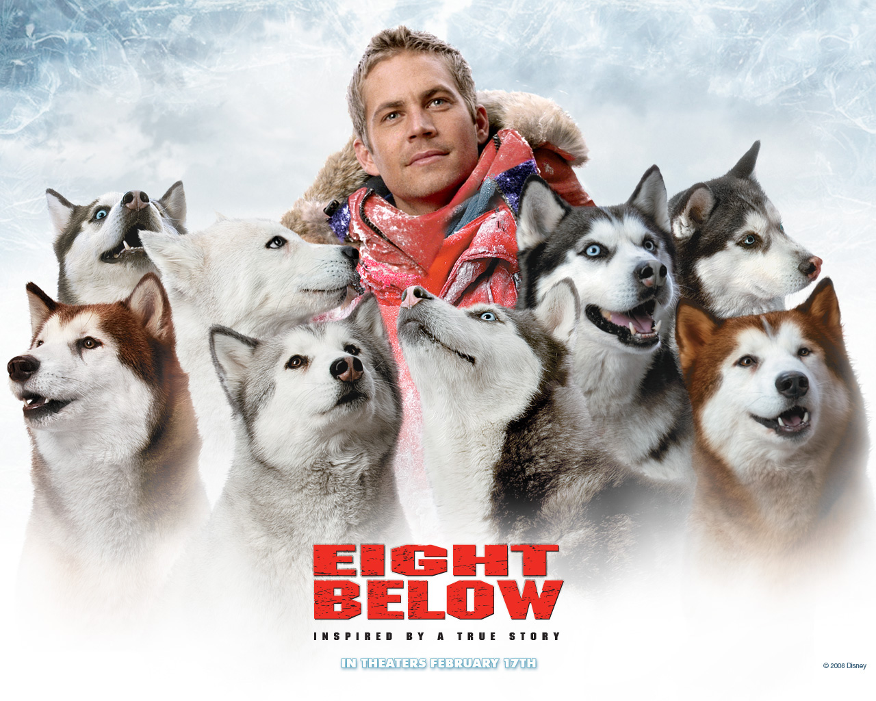 Paul_Walker_in_Eight_Below_Wallpaper_1_1280