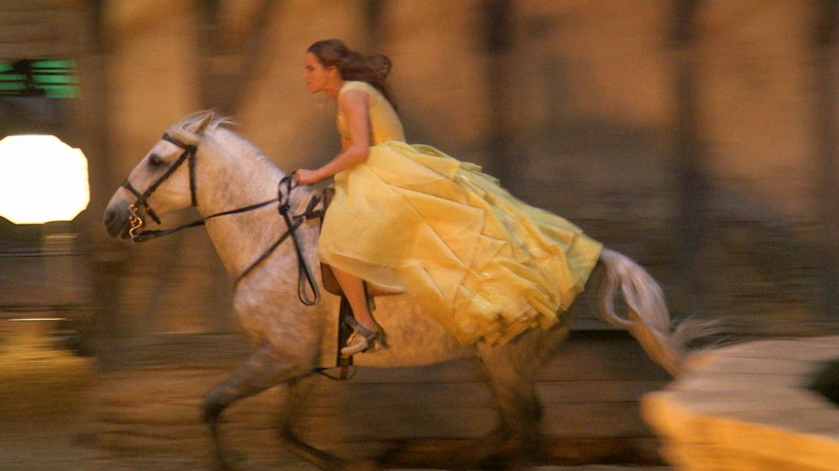馬に乗る美女と野獣